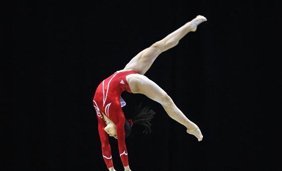 Artistik Jimnastik